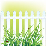 Fence and grass Stock Image