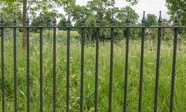 Fence. With a grass background royalty free stock images