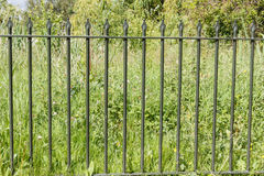 Fence. With a grass background royalty free stock photo