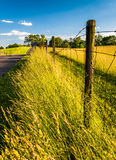 Fence and grasses along a road at Antietam National Battlefield, Royalty Free Stock Photos