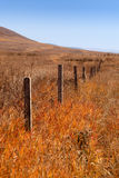 Fence grassland Stock Photo
