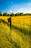 Fence in a grassy field, at Antietam National Battlefield, Maryl Royalty Free Stock Photos
