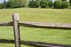 Fence and green field Royalty Free Stock Images