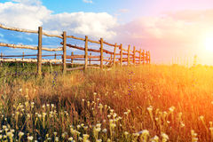 Fence in the green field under blue cloud sky. Beautiful landscape Royalty Free Stock Photography