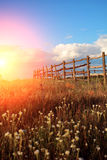Fence in the green field under blue cloud sky. Beautiful landscape Royalty Free Stock Photo