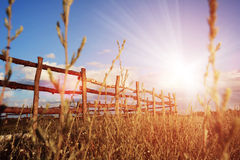 Fence in the green field under blue cloud sky. Beautiful landscape Royalty Free Stock Images