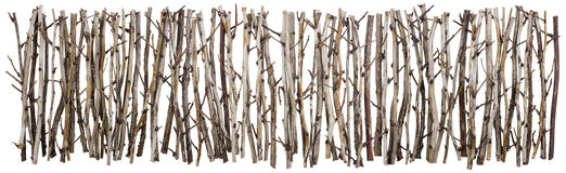 Fence for Halloween isolated. Fence for Halloween from clumsy dry bush branches line. Isolated collage royalty free stock photo