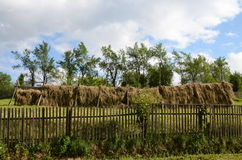 Fence hay Royalty Free Stock Images