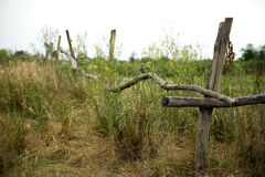 Fence on a heathland. Wooden fence of waste ground Royalty Free Stock Photos