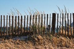 Fence and high dry grass Royalty Free Stock Photos