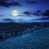 Fence on hillside meadow in mountain at night Stock Photography