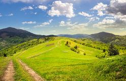 Fence on hillside meadow in mountain at sunrise Stock Images