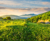 Fence on hillside meadow in mountain at sunrise Royalty Free Stock Photography