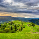 Fence on hillside near forest in mountain Royalty Free Stock Image