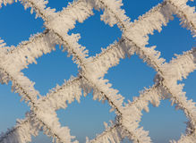 Fence with hoarfrost Royalty Free Stock Photography