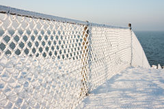 Fence with hoarfrost in the winter Royalty Free Stock Image