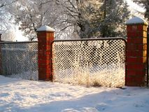 Fence with hoarfrost in the winter sunny day Royalty Free Stock Photography