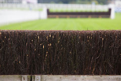 Fence On Horse Racing Track Royalty Free Stock Photos