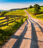 Fence and horses along a country backroad in rural York County,. PA royalty free stock image