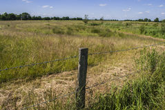 The Fence II. Rural spot - bright day - clear sky Royalty Free Stock Photography