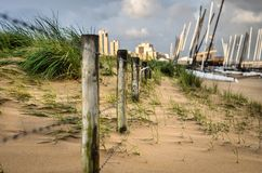 A fence isolating dunes from the rest of the beach Royalty Free Stock Images