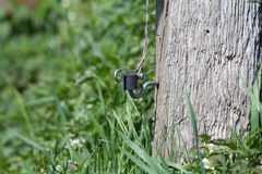 Fence with isolator, close-up Stock Photos