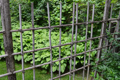 Fence in a Japanese Garden Stock Image