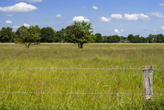 Fence. Landscape - rural - countryside - field in spring - bright day - clear sky - just a few clouds Stock Images
