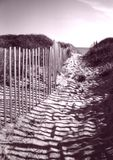 Fence Leading to Cape Cod Beach. Taken at Cape Cod National Seashore Stock Photos