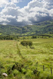 Fence leading to trees and rocky mountains. View from a beautiful hiking route the kerry way in ireland of fence leading to trees and rocky mountains Stock Images