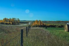 Fence line across a farmers field. On the prairies, Foothills, Alberta, Canada Royalty Free Stock Images