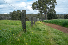 Fence Line. Australian farm timber post and wire fence line Royalty Free Stock Images