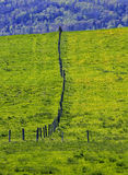 Fence Line Countryside Field Royalty Free Stock Image