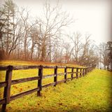 Fence line in the fall in Ohio. Green grass , fence line, trees, horse farm, Ohio royalty free stock photography