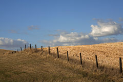 Fence line through the field. Stock Photos