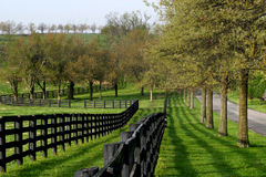 Fence Line and Lane. Fence Line and Country Lane, Lexington, Kentucky, Horse Country stock photography