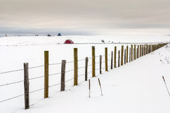 Fence line and red barn winter Stock Photography