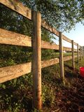 Fence line at sunrise. Weathered fence with tree Royalty Free Stock Photo