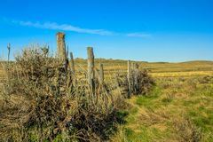 Fence line through the wild grasslands. Grasslands National Park, Saskatchewan, Canada Royalty Free Stock Images