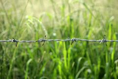 Fence made of barbed wire stock image