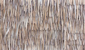 Fence made of Dried Nipa Palm Leaves Royalty Free Stock Photos