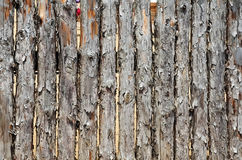 Fence made of logs Stock Photography