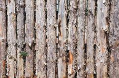 Fence made of logs Royalty Free Stock Photography