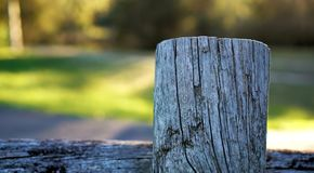 Fence made out of chopped log royalty free stock photos