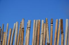 A fence made of twigs royalty free stock photo