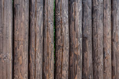 A fence made of upright standing pine logs Stock Images