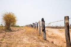 Fence made of wooden dry tree and metal wire in Tay Nguyen, Central Highlands of Vietnam.  stock photography