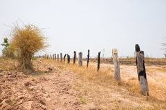 Fence made of wooden dry tree and metal wire in Tay Nguyen, Central Highlands of Vietnam.  stock photos