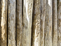 Fence made of wooden logs. Fence made of the wooden logs royalty free stock photography