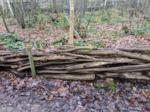 Fence made of wooden logs in the countryside in the UK. Brown logged intertwined to make a fence. Leaves, vegetation and leaves in the background stock image